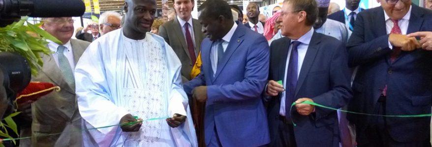 Foire en Belgique : les Dg de l'Asepex et de la Direction des Sénégalais de l'Extérieur emportent Secrétaires, chauffeur, chambellan dans leurs valises (Nettali.sn)