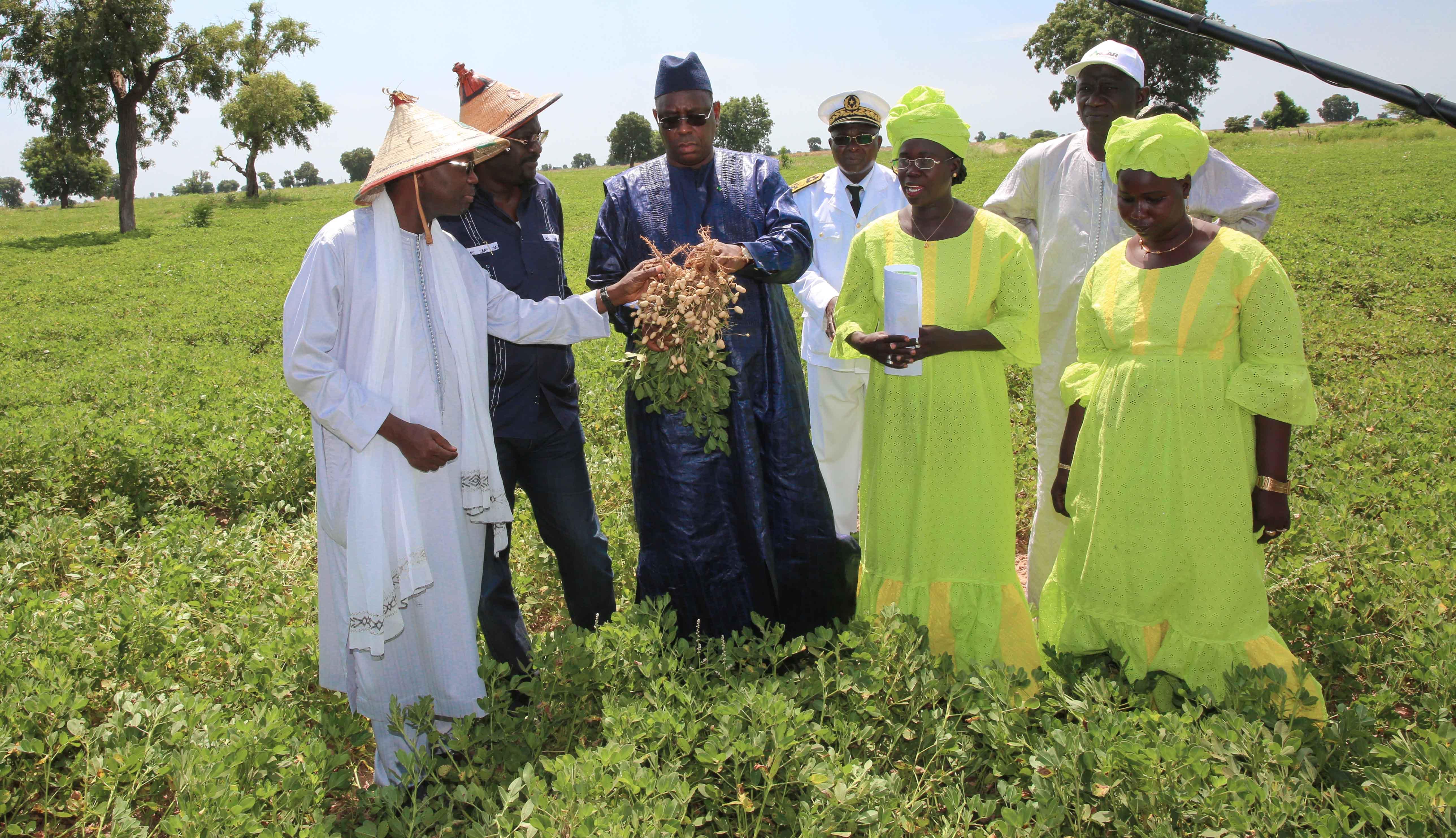 Le Président Sall démarre sa tournée économique et agricole avec des promesses fortes en direction des femmes