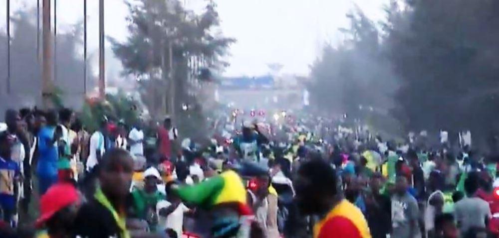 Les lions en route pour le Palais de la République sous les acclamations de milliers de supporters (Images)