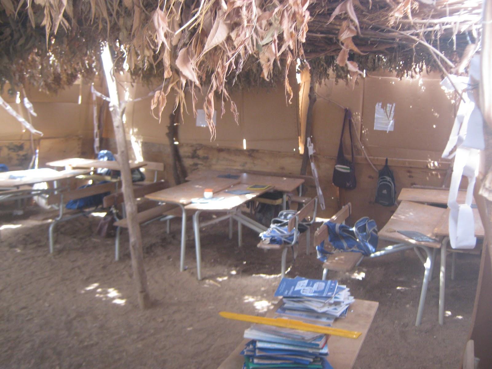 Maux de l'enseignement sénégalais: symptômes et solutions