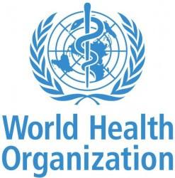 Les Présidents Hollande et Zuma remettent le rapport de la Commission sur l'Emploi en Santé et la Croissance économique à Ban Ki-moon